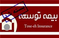 پرونده بیمه توسعه تا پایان سال بسته می شود
